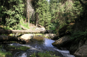 Hiling in the Jeseníky Mountains,
